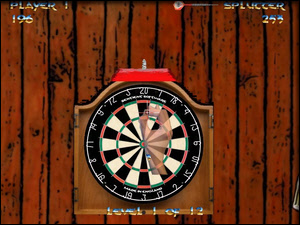 Competition 2nd place - World Championship Darts