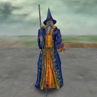 TGS_Wizard